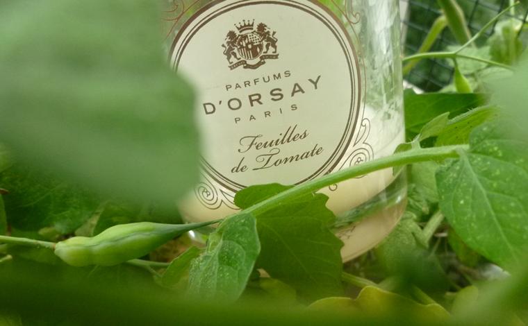 bougie Feuilles de tomate Parfums d'Orsay
