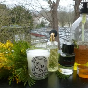 parfums bougie mimosa